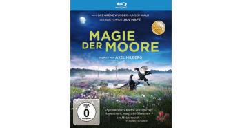 Magie_der_Moore