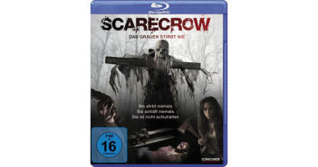 Scarecrow_Cover