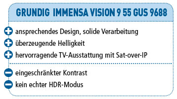 grundig immensa vision 9 procon audiovision. Black Bedroom Furniture Sets. Home Design Ideas