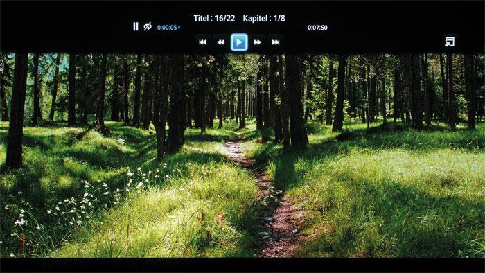 HDR-Probleme: Der Wald erscheint in den HDR-Presets überzogen und zu hell. Die SDR-Zuspielung (Screenshot oben) zeigt Farben und Gräser im Vergleich natürlicher.