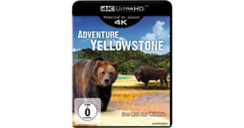 adventure-yellowstone