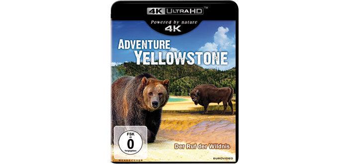 adventure-yellowstone