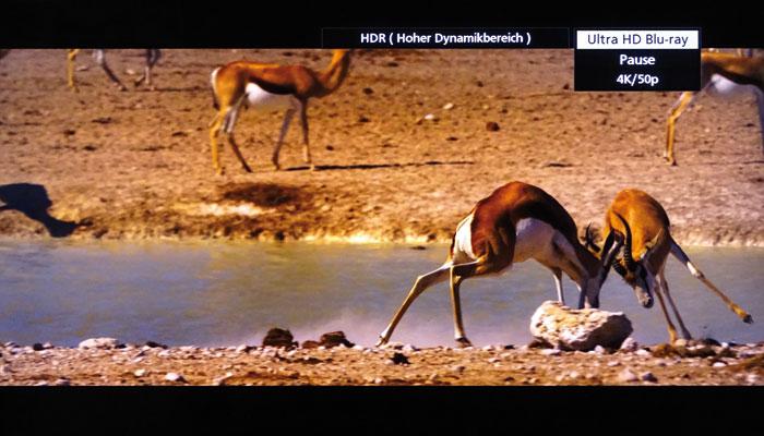 """Die Ultra-HD-Blu-ray von """"Namibia"""" wurde mit 50 Vollbildern (50p) und HDR auf die Scheibe gepackt."""