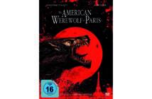 american-werewolf-paris